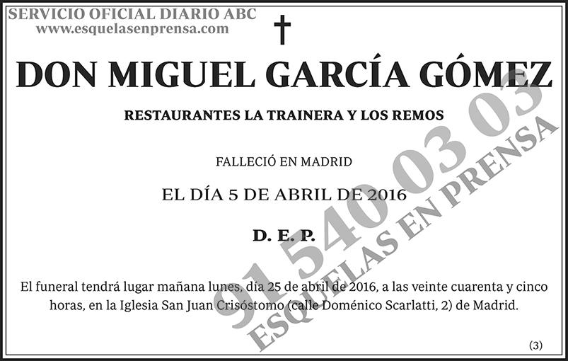 Miguel García Gómez